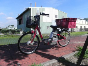 electric bicycle pedelec
